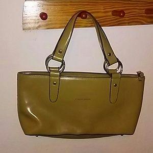 Caidi Dior Chartreuse Handbag